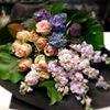 Grandiflora Saskia Havekes