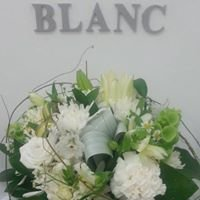 Blanc Flowers