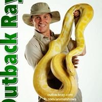 Outback Ray    Amazing Animal Shows