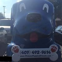 We Love Puppies & cats Mobile Grooming
