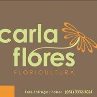 Carla Flores - Floricultura