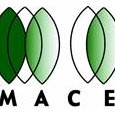 MACE Incorporated