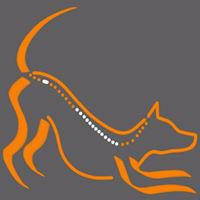 SanaVet Tiertherapie
