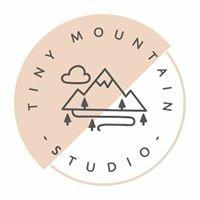 Tiny mountain studio