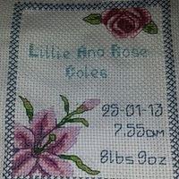 Hand-Made Cross-Stitch Crafts