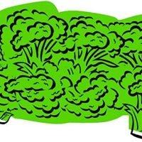 Greensofa.com.au