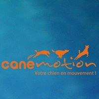 Canémotion Centre de Remise en Forme & Préparation Sportive du Chien
