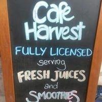 Cafe Harvest BGC