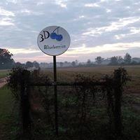 3D Blueberry Farm