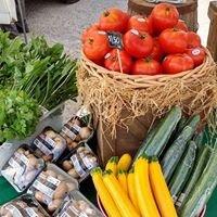 Wilmot Summer Market