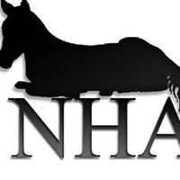 Natural Horsemanship Association