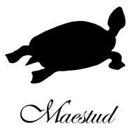 Maestud