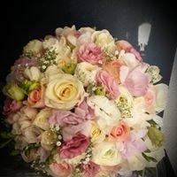 Wild Violet Florist & Gifts