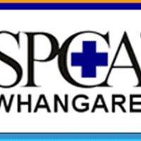 SPCA Whangarei
