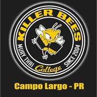 Academia Killer Bees Campo Largo