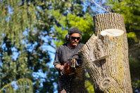 Michiana Tree Care