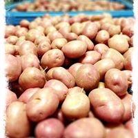 Adelaide Produce Market
