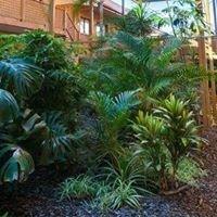 Comfort Inn & Suites Robertson Gardens