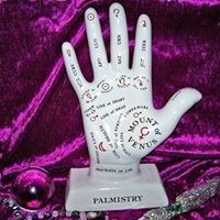 Palm Reading with Korin George
