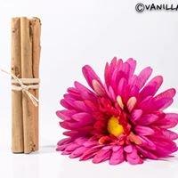 vanilla-spices.com