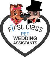 First Class Pet Wedding Assistants