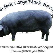 The Norfolk Large Black Banger Co.