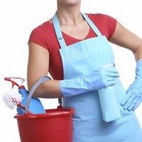 Impresa di pulizie e giardinaggio di D'amore Luciana