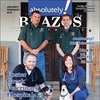 Absolutely Brazos Community Magazine