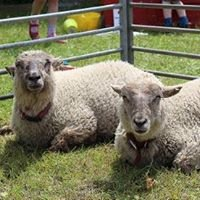 Hurst Show and Country Fayre