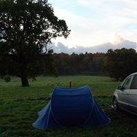 Minstead Manor Farm Campsite