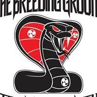 The Breeding Ground
