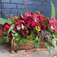 Lotus Floral Studio