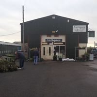The Mickleton Shed Antiques Ltd