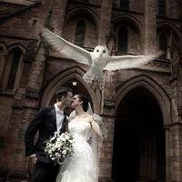 Sipka Weddings