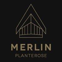 Merlin Planterose - Jewellery
