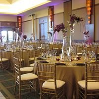 Chair Covers by Sylwia