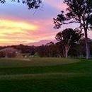Sawtell Golf-Club