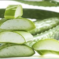 Aloe Vera Health, Fitness & Beauty