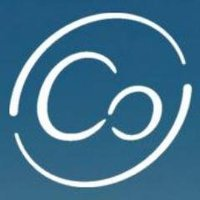 Cogofly