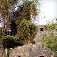 Una Bella Giornata at Cardella Winery
