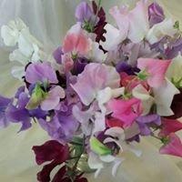 Carol's Florist - Flowers by Lucie