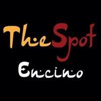 The Spot Hookah