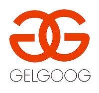 GELGOOG Frying Equipment