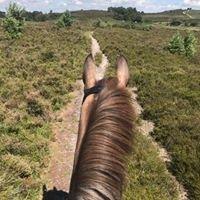 Bagnum Equestrian Centre Ltd