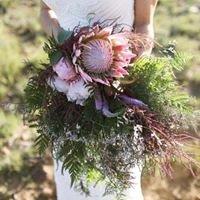 Nieu-Bethesda-Karoo-Weddings