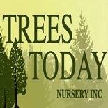 Trees Today Nursery