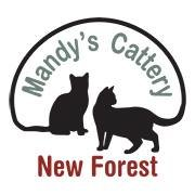 Mandy's Cattery