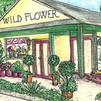 Wildflower Florist RI
