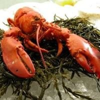 Coastal Critters Clambakes & Grilling
