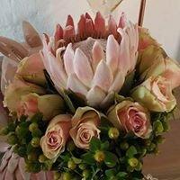 Meraki Floral and Decor Design